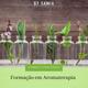 curso-bysamia-aromaterapia-formacao-oleos-essenciais